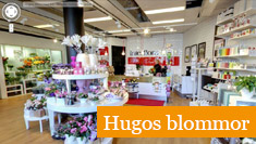 Google Företagsfoton - exempel Hugos blommor i Skövde