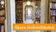 Google Företagsfoton - exempel Skara stiftsbibliotek